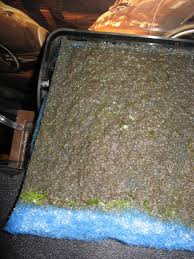 clogged aquarium filter